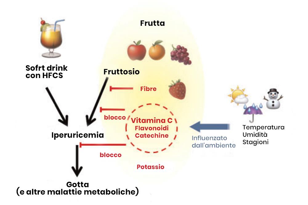Ingerire fruttosio mangiando frutta è tutta un'altra cosa